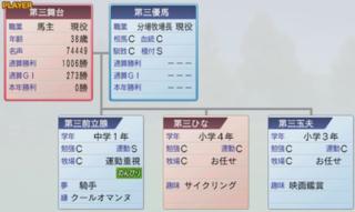 2015 2周目 2000家系図.PNG