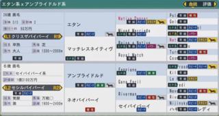 20163周目 2010エタン産駒〆配合血統表.PNG