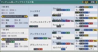 20163週目 2014シェスキイ産駒〆配合完成.PNG