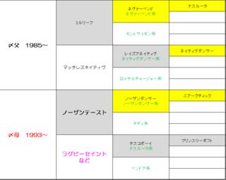 20166周目 〆配合2完成図.PNG
