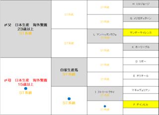 2017 1周目 配合完成予定図.PNG