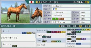 2017お勧め繁殖牝馬シルキーオーロラ.PNG
