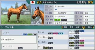 2017お勧め繁殖牝馬タイキホール.PNG