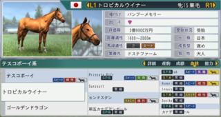2017お勧め繁殖牝馬トロピカルウイナー.PNG