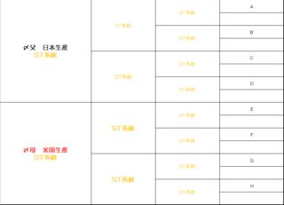 STきゅうきょく完成予定図1.PNG