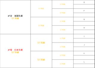 STきゅうきょく完成予定図2.PNG