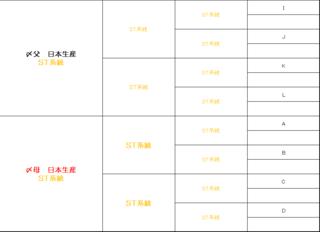 STきゅうきょく完成予定図3.PNG