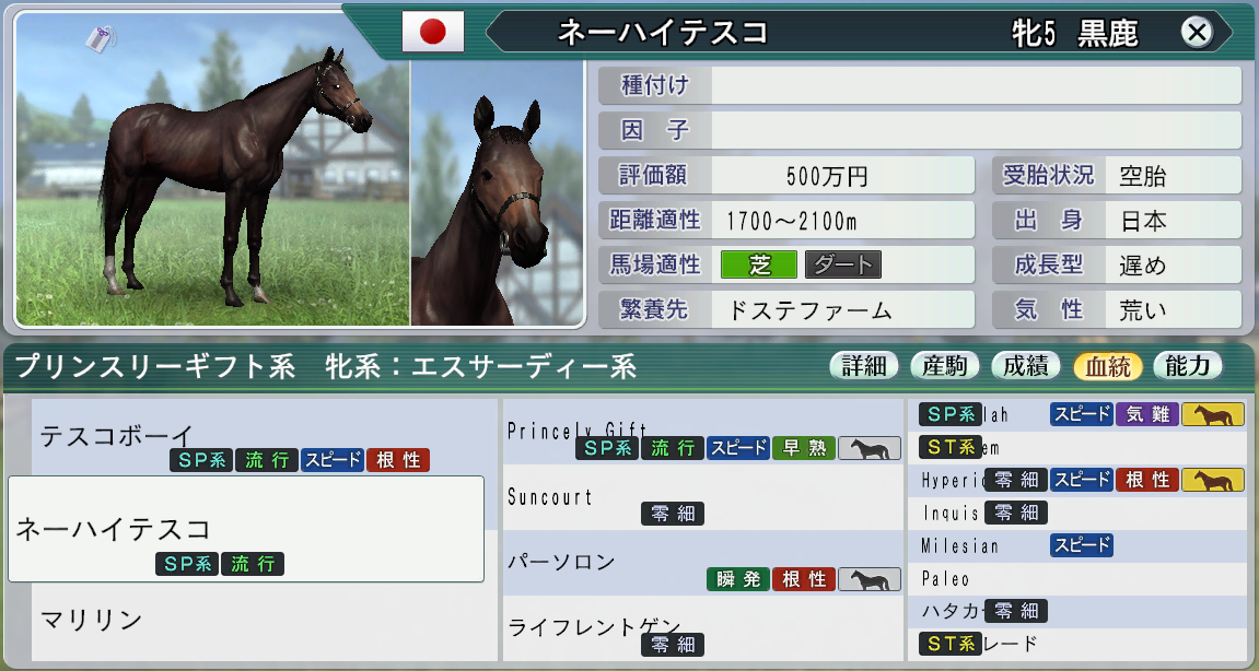 お勧め牝馬2