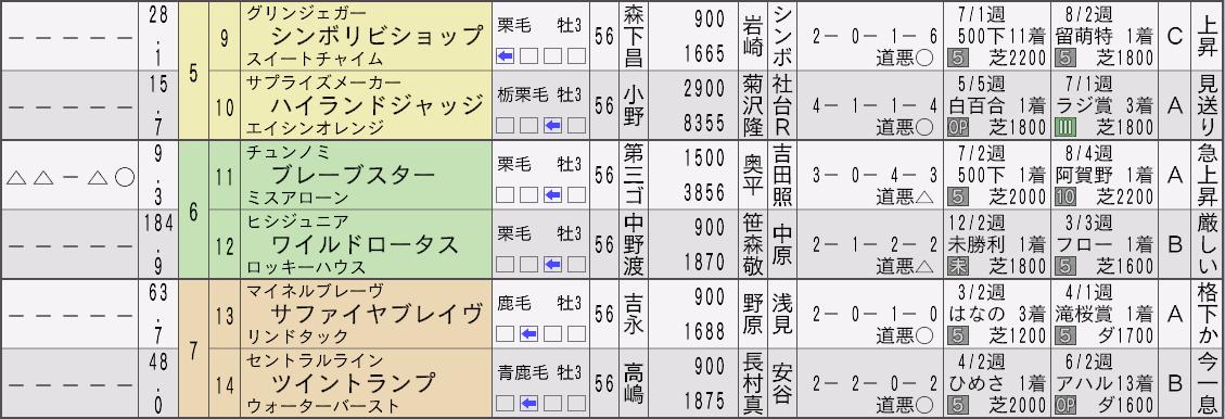 2032セントライト記念新聞2