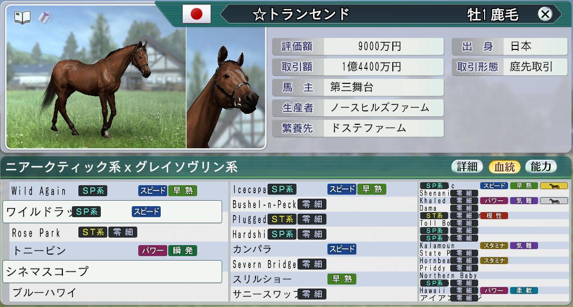 6周目2008購入1歳馬