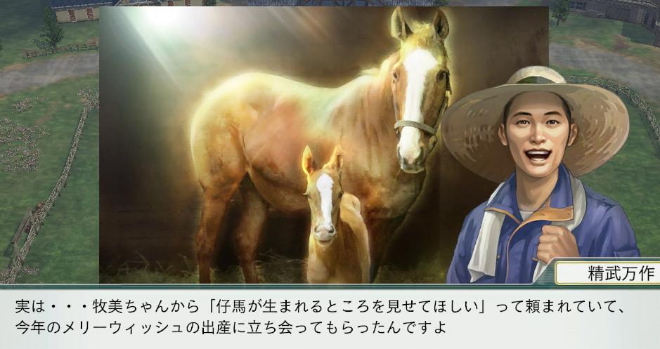 2015 1周目 2013 牧美幼駒出産立ち会い
